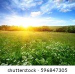 green field blue sky and sun.  | Shutterstock . vector #596847305