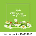 inscription hello spring on... | Shutterstock .eps vector #596959019
