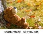 relaxing teddy bear under tree... | Shutterstock . vector #596982485