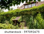 House Covered With Green Ivy