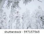 Crown Snow Load Landscape In...
