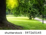 summer city park | Shutterstock . vector #597265145