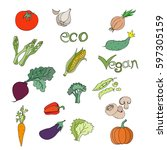 vegetables | Shutterstock .eps vector #597305159