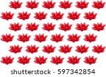 red lotus flower plot   Shutterstock .eps vector #597342854