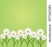 Chamomile Flower On Green...