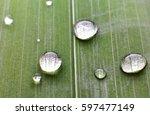 water dot | Shutterstock . vector #597477149