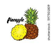 beautiful pineapple. vector... | Shutterstock .eps vector #597501809