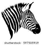 black and white linear paint... | Shutterstock . vector #597505919