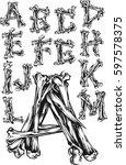 bones alphabet   Shutterstock .eps vector #597578375