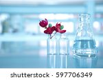 red flower with flask and vial... | Shutterstock . vector #597706349