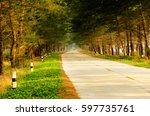 pine tree road | Shutterstock . vector #597735761