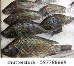 Frozen Nile Tilapia Fish In A...