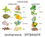 ayurvedic warming and cooling... | Shutterstock .eps vector #597846659