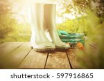 garden tools and spring time  | Shutterstock . vector #597916865