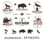wild animal badges set and... | Shutterstock . vector #597962591