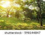 beautiful morning light in...   Shutterstock . vector #598144847