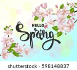 hello spring background with...   Shutterstock .eps vector #598148837