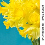 Bouquet Of Daffodils On Blue...