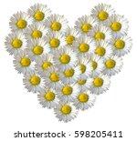 Daisy Flower Full Heart. White...