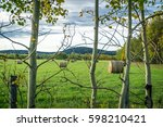 farm field with hay bales in...   Shutterstock . vector #598210421