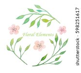 watercolor floral elements... | Shutterstock . vector #598251617