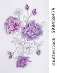 sketch of a purple peony on a... | Shutterstock . vector #598458479