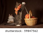 Stock photo small kitten playing with balls of threads and other knitting accessories 59847562