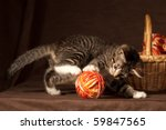 Stock photo small kitten playing with balls of threads and other knitting accessories 59847565