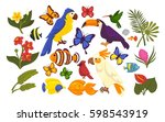 set of exotic flora and fauna... | Shutterstock .eps vector #598543919