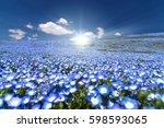 nemophila  flower field and... | Shutterstock . vector #598593065