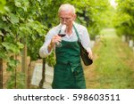 wine tasting at the winery....   Shutterstock . vector #598603511