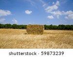 bale of straw | Shutterstock . vector #59873239