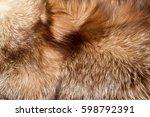 fur. the coat of the animal.... | Shutterstock . vector #598792391