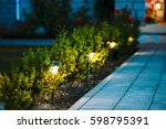 night view of flowerbed with... | Shutterstock . vector #598795391