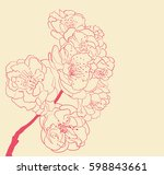 blossoming tree line art hand... | Shutterstock . vector #598843661