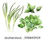 green vegetables set  onion... | Shutterstock . vector #598845929