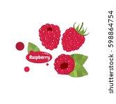 raspberry vector | Shutterstock .eps vector #598864754
