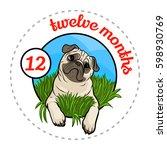 monthly baby sticker. cute... | Shutterstock .eps vector #598930769