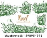 hand drawn vector illustration... | Shutterstock .eps vector #598954991