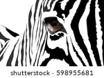 Vector Portrait Of A Zebra. Th...