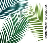 Palm Leaves Background. Vector...