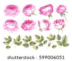 vintage set of blooming roses.... | Shutterstock . vector #599006051