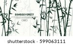 bamboo forest set. nature.... | Shutterstock .eps vector #599063111