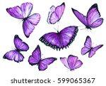 Flying Purple Butterfly....