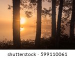 pine ridge has a lake with mist ...   Shutterstock . vector #599110061