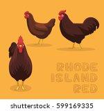 chicken rhode island red... | Shutterstock .eps vector #599169335