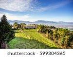 benedictine abbey  montecassino ... | Shutterstock . vector #599304365