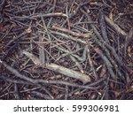 broken twigs on forest floor | Shutterstock . vector #599306981