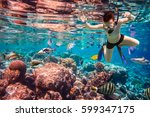 snorkeler diving along the... | Shutterstock . vector #599347175