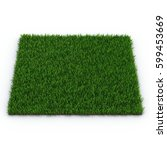 zoysia grass on white. 3d... | Shutterstock . vector #599453669